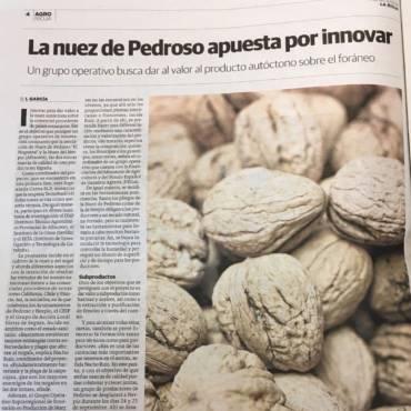 La nuez de Pedroso apuesta por innovar
